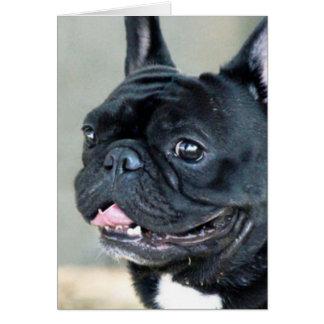 French Bulldog dog Card