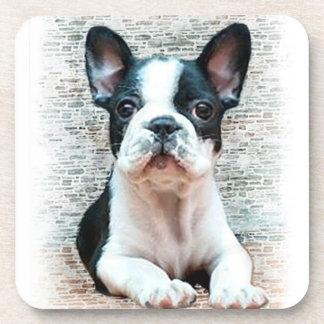French bulldog dog drink coasters