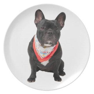 French Bulldog, dog cute beautiful photo, gift Party Plates
