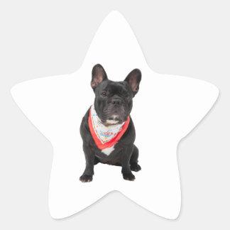 French Bulldog,  dog cute beautiful photo, gift Star Sticker