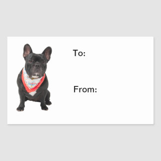 French Bulldog,  dog cute beautiful photo to, from Rectangular Sticker