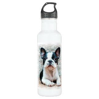 French bulldog dog 710 ml water bottle