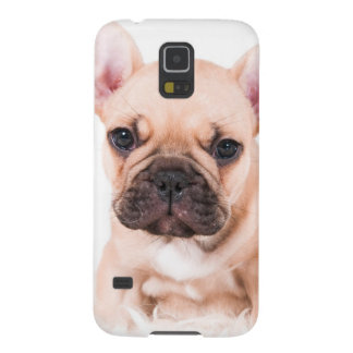 French Bulldog Galaxy S5 Cover