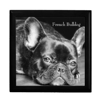 French Bulldog Gift Box