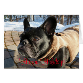 French Bulldog Holiday Greeting Card