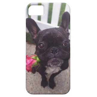 French Bulldog i-Phone 5/5S case