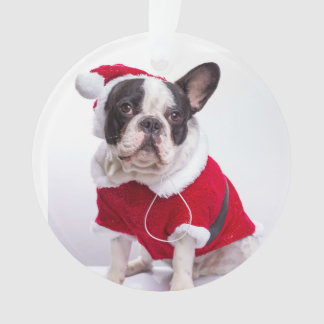French Bulldog In Santa Costume For Christmas Ornament