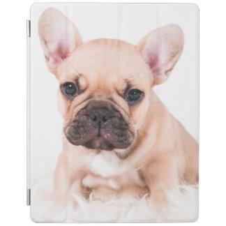 French bulldog. iPad cover