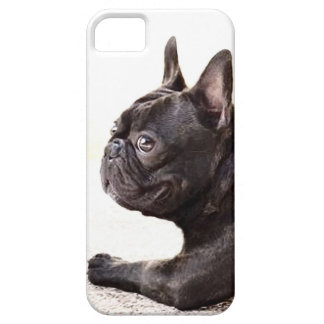 French Bulldog iPhone 5 Case