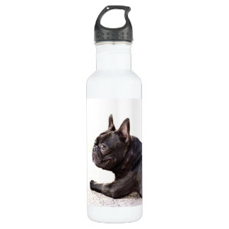 French Bulldog Liberty 710 Ml Water Bottle
