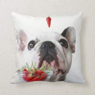 French Bulldog Looking At A Red Pepper Cushion