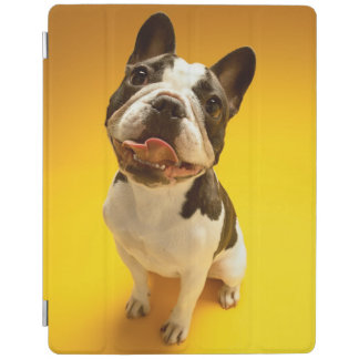French Bulldog Looking Up iPad Cover