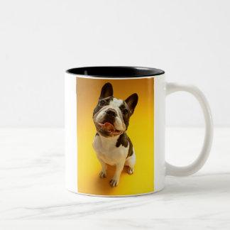 French Bulldog Looking Up Two-Tone Coffee Mug
