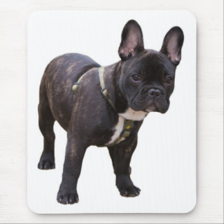French Bulldog mousepad, gift idea Mouse Mat
