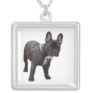 French bulldog necklace, gift idea silver plated necklace