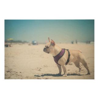 French Bulldog On Beach Wood Wall Art