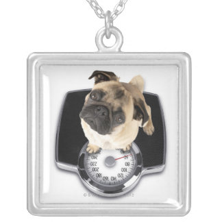 French bulldog on scales looking up at camera square pendant necklace