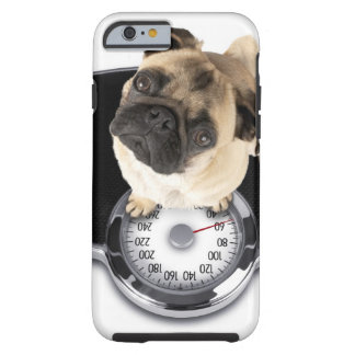 French bulldog on scales looking up at camera tough iPhone 6 case