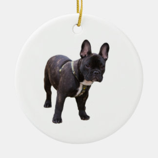 French Bulldog ornament, gift idea Christmas Ornament