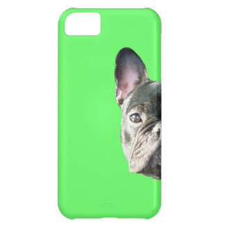 French Bulldog 'peeking' Iphone 5 case in GREEN
