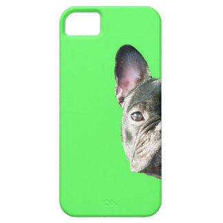 French Bulldog 'peeking' Iphone 5 case in GREEN