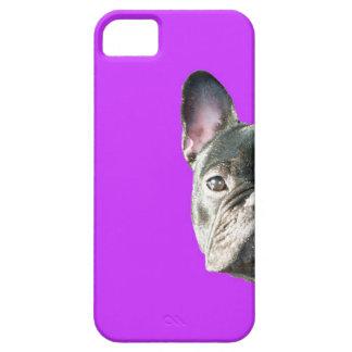 French Bulldog 'peeking' Iphone 5 case in PURPLE