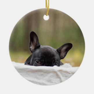 french bulldog peeking puppy christmas ornament