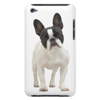 French Bulldog photo iPod Touch 4G case, gift idea iPod Case-Mate Case