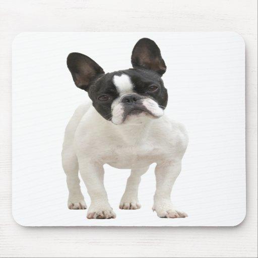 French Bulldog photo mousepad, gift idea