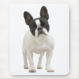 French Bulldog photo mousepad, gift idea Mouse Pad