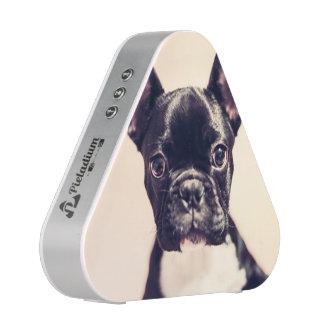 French Bulldog Speaker