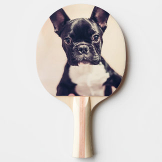 French Bulldog Ping Pong Paddle