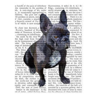 French Bulldog Plain Postcard