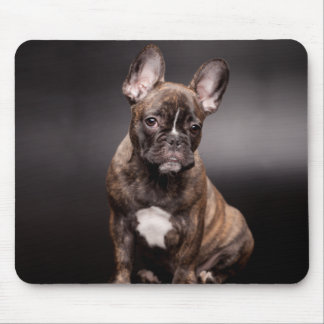 French Bulldog Portrait Mouse Pad