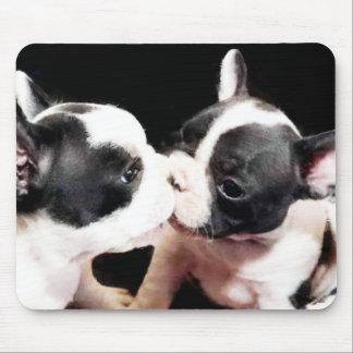French bulldog puppies mouse pad