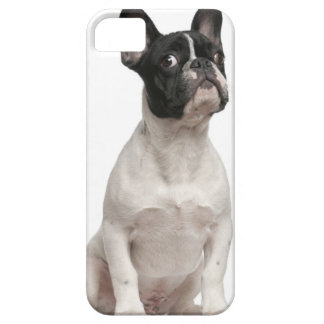 French Bulldog puppy (5 months old) iPhone 5 Covers