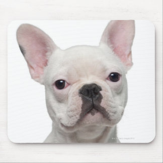 French Bulldog Puppy (5 months old) Mouse Mat