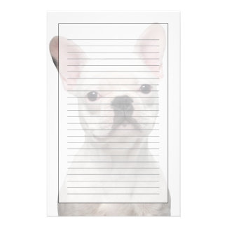 French Bulldog Puppy (5 months old) Stationery