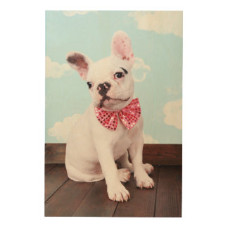French Bulldog Puppy ( 7 Month Old) With Pink Bow Wood Wall Art
