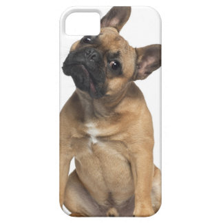 French Bulldog puppy (7 months old) Case For The iPhone 5