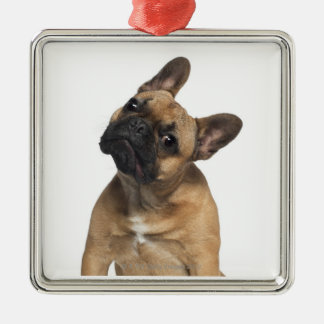 French Bulldog puppy (7 months old) Silver-Colored Square Decoration