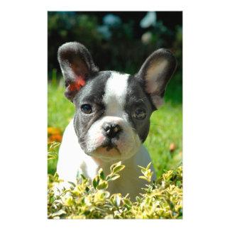 "French bulldog puppy behind the foliage 5.5"" x 8.5"" flyer"