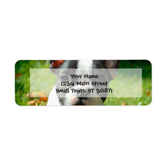 French bulldog puppy behind the foliage return address label
