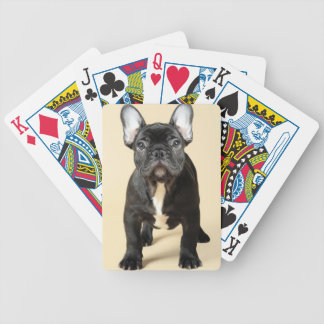 French Bulldog Puppy Bicycle Playing Cards