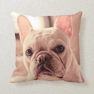 French Bulldog Puppy Cushion