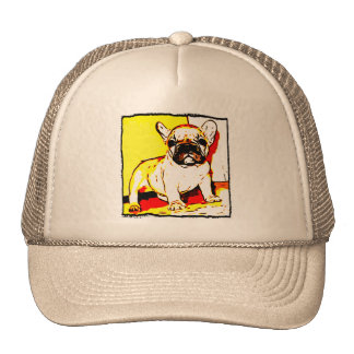 French bulldog puppy hat