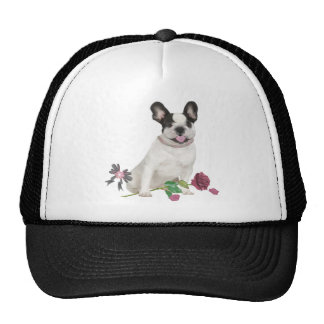 FRENCH BULLDOG PUPPY IN PINK MESH HAT