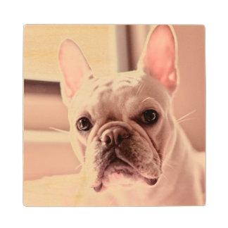 French Bulldog Puppy Maple Wood Coaster