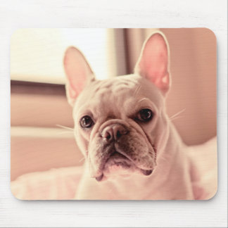 French Bulldog Puppy Mouse Mat