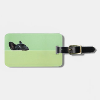 French Bulldog Puppy Peering Over Wall Luggage Tag